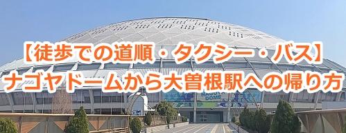 ナゴヤドームから大曽根駅への帰り方(徒歩での道順・タクシー・バス)
