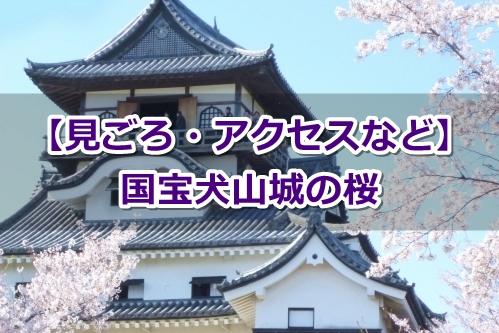 国宝犬山城の桜(見ごろ・アクセスなど)