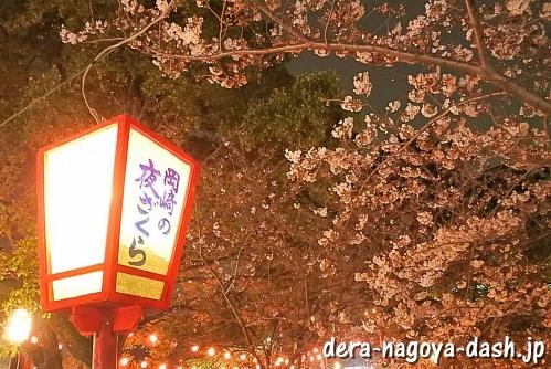 岡崎公園(岡崎城)の夜桜ライトアップ