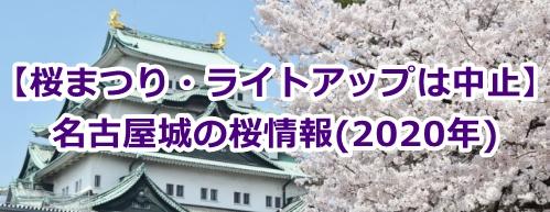 名古屋城の桜情報(2020年・桜祭りとライトアップは中止)
