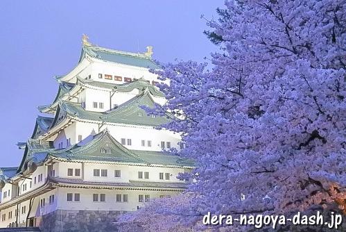 名古屋城と夜桜ライトアップ