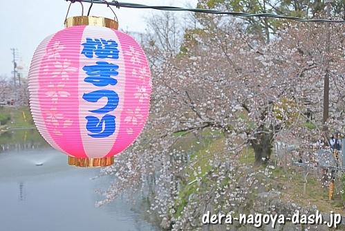 岡崎桜祭り(岡崎城・岡崎公園の桜)