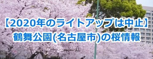 [2020年]鶴舞公園の桜情報まとめ