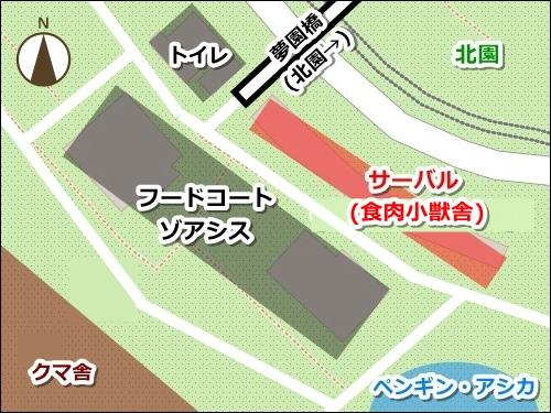 東山動物園(名古屋市千種区)サーバルキャットの場所(園内マップ)