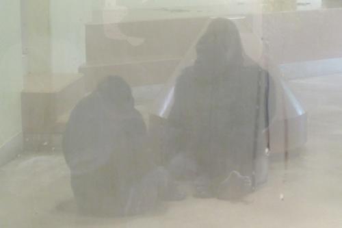 東山動物園(名古屋市千種区)ゴリラ(雨の日)02