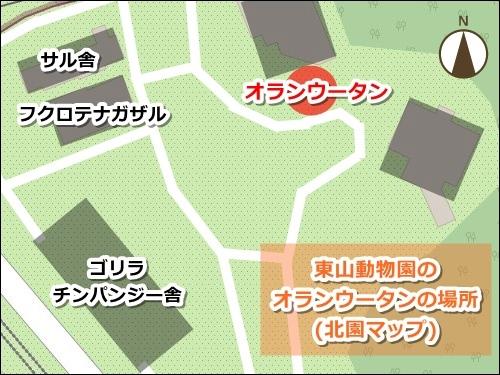東山動物園(名古屋市千種区)のオランウータンの場所(地図)